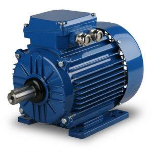 ELEKTRIM CANTONI Electric Motor
